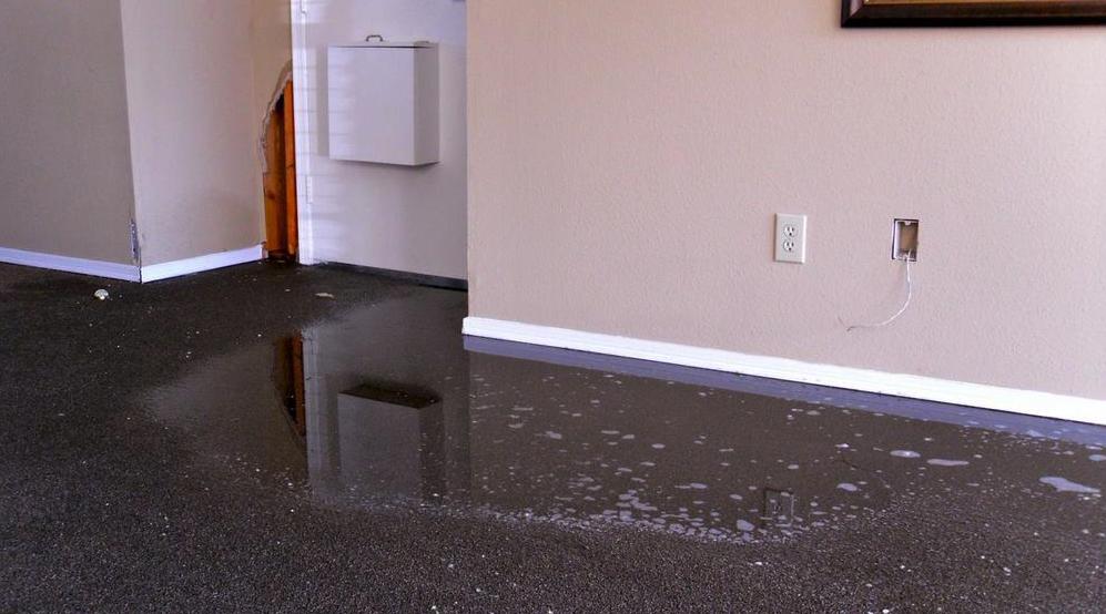 Water damage florida public adjuster bulldog adjusters for Bathroom flooded wet carpet