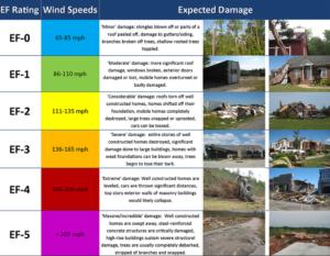 storm damage-bulldog adjusters-florid public adjuster