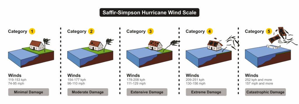 Avoid Mold this Hurricane Season-tornado damage-bulldog adjusters-Florida, Georgia, South Carolina and North Carolina 1 (1)