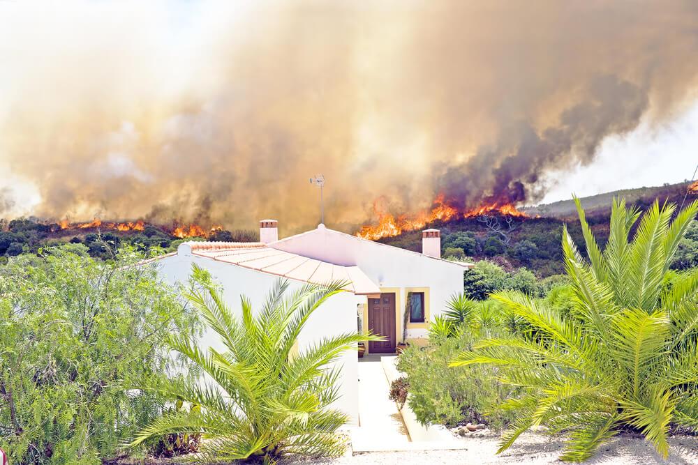 House | Brush Fires | Bulldog Adjusters
