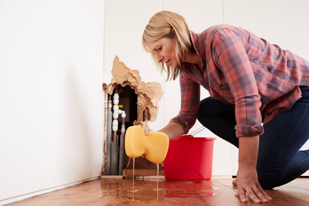 Mopping | Water Damage | Bulldog Adjusters
